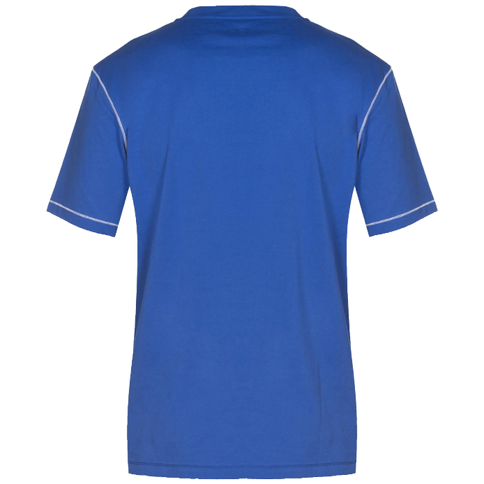 Arena TL S/S Tee Royal